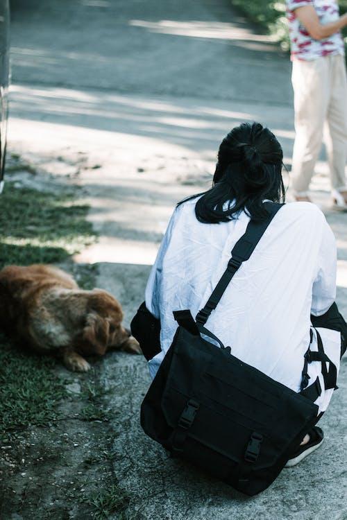 Free stock photo of asian, asian guy, dog
