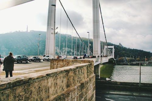Fotos de stock gratuitas de Budapest, Hungría, puente
