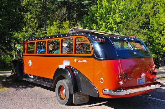 Free stock photo of bus, tourist, red bus, tourist bus