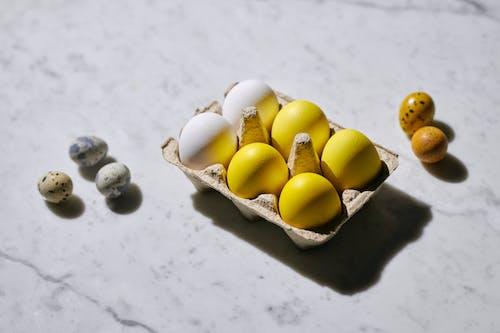 Fotos de stock gratuitas de aves de corral, cáscara, cáscara de huevo