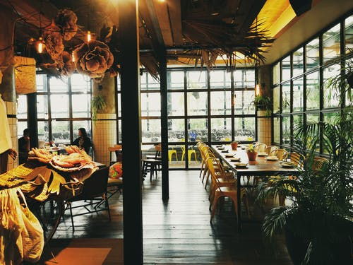 Free stock photo of bar cafe, dark green, dining