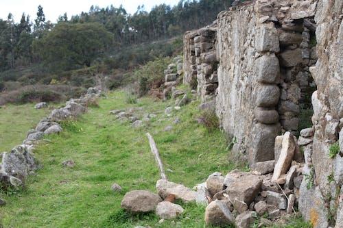 Immagine gratuita di ambiente, area rurale, montagna