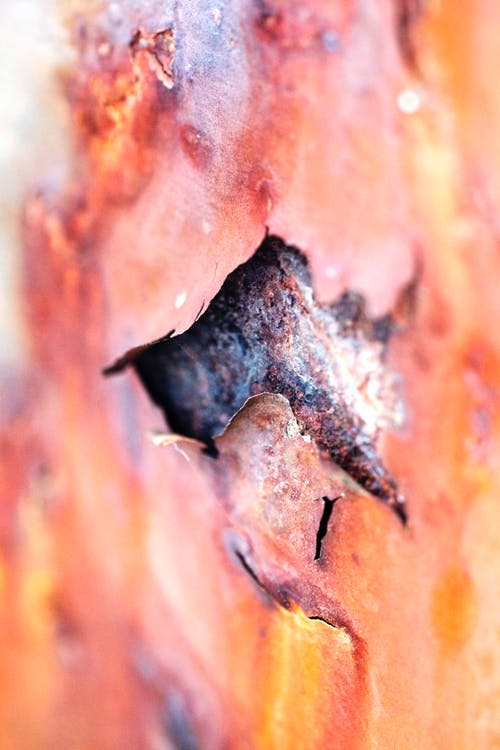 Free stock photo of concept, corrosion, detail
