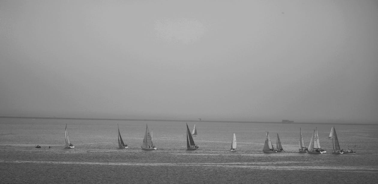 Free stock photo of by the sea, sail boats
