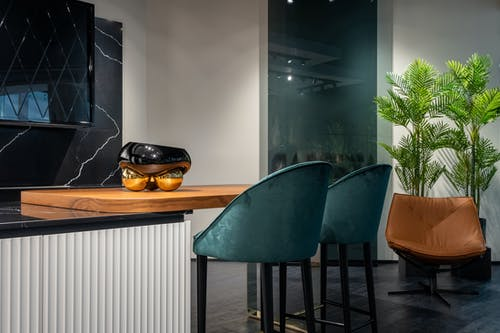 Comfortable blue high chairs near counter in trendy modern kitchen decorated with lush potted plants in evening
