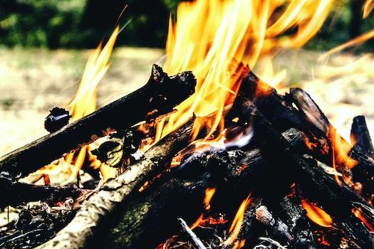 Free stock photo of fire, hot, smoke, campfire