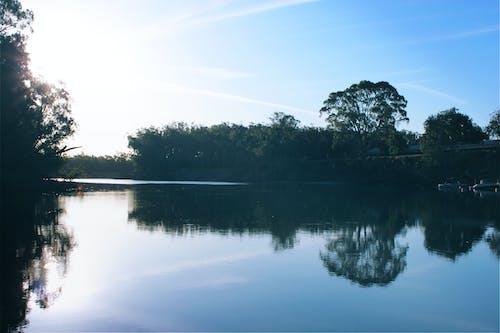 ağaçlar, gemiler, gün batımı, Güneş içeren Ücretsiz stok fotoğraf