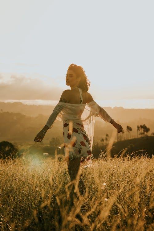 Foto stok gratis alam, alami, anggun