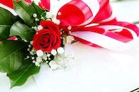 love, romantic, petals