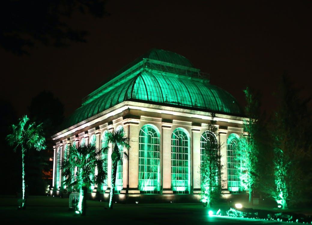 Free stock photo of art, Botanic Garden Edinburgh, green light