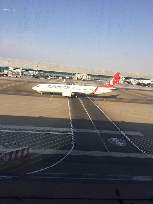 Δωρεάν στοκ φωτογραφιών με turkish airlines στο αεροδρόμιο του ντουμπάι