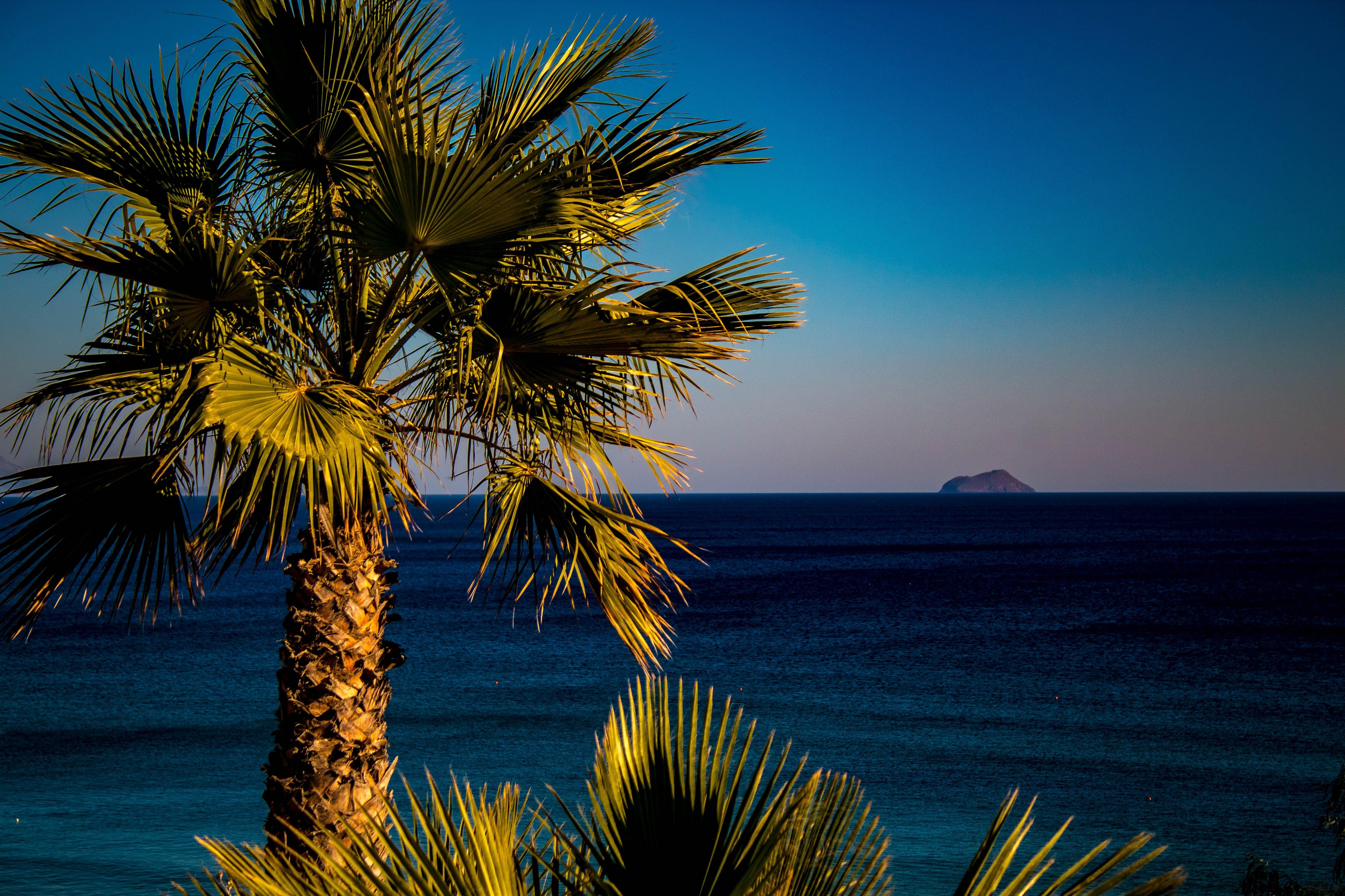 Free stock photo of greece, kos, landscape, outdoor