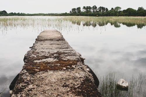 和平的, 夢幻般的風景, 孤獨 的 免費圖庫相片