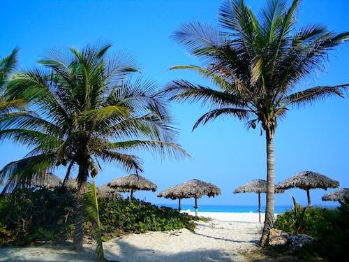Gratis lagerfoto af ferie, hav, havudsigt, kyst
