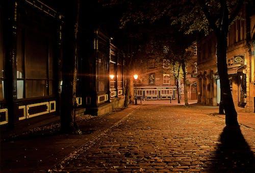 Immagine gratuita di alberi, ciottoli, cittadina, lampione