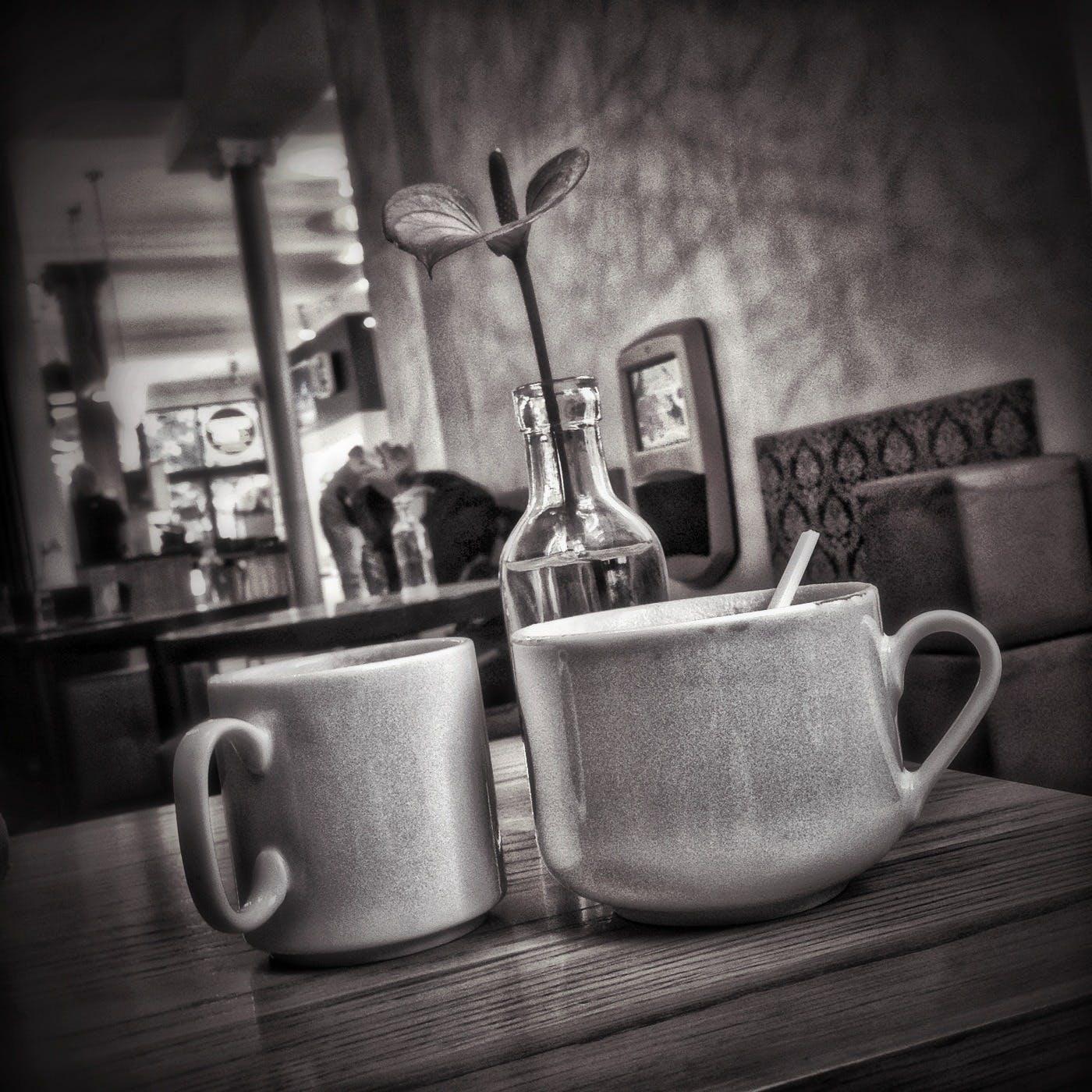 Základová fotografie zdarma na téma černobílý, drinky, flóra, hrnky