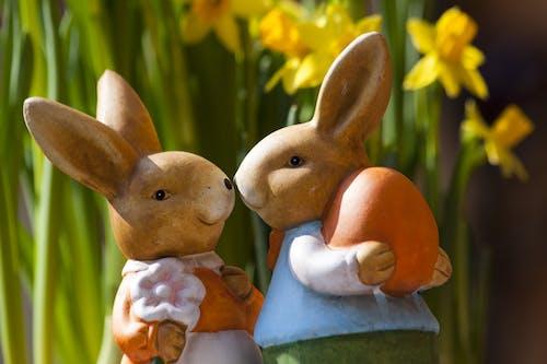 Fotobanka sbezplatnými fotkami na tému dvojica, farebný, figúrky, králiky