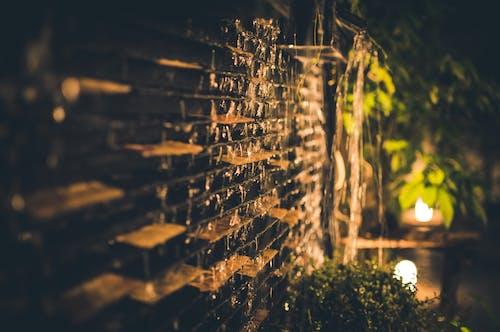 Fotos de stock gratuitas de agua, árbol, arquitectura, Arte