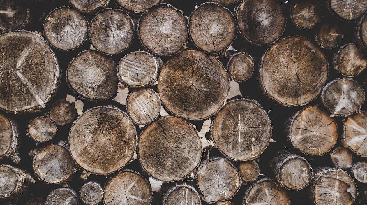 apróra vágott fa, durva, fa