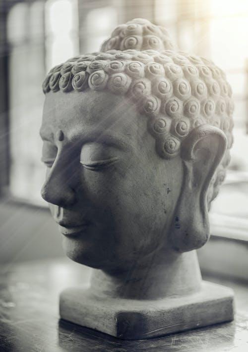 Fotobanka sbezplatnými fotkami na tému Boh, Buddha, čierny abiely, detailný záber
