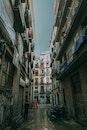 city, road, houses