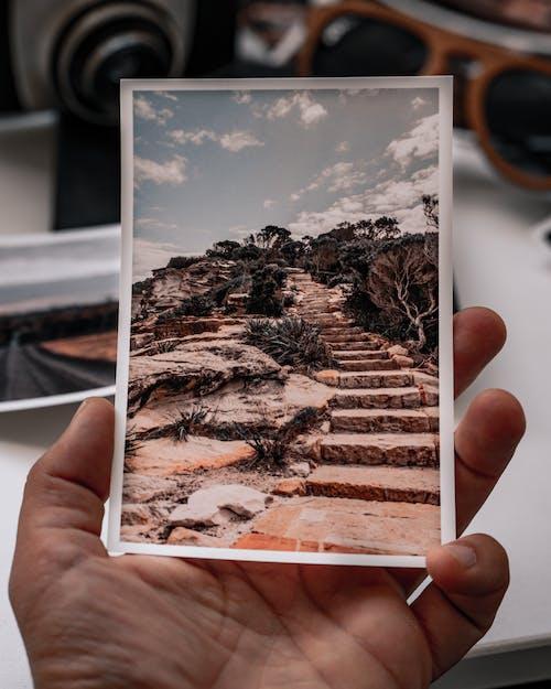 Ingyenes stockfotó kezében egy fénykép, kezében egy régi fénykép, kezében fénykép témában
