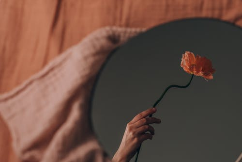 Person Holding Orange and Yellow Flower