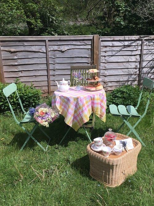 Imagine de stoc gratuită din arbori, buchet, ceainic, curte