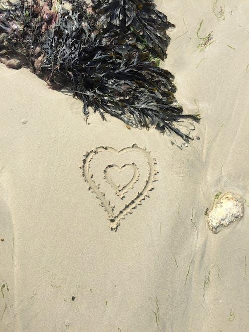 모래, 사랑, 사랑하는 마음, 해변의 무료 스톡 사진