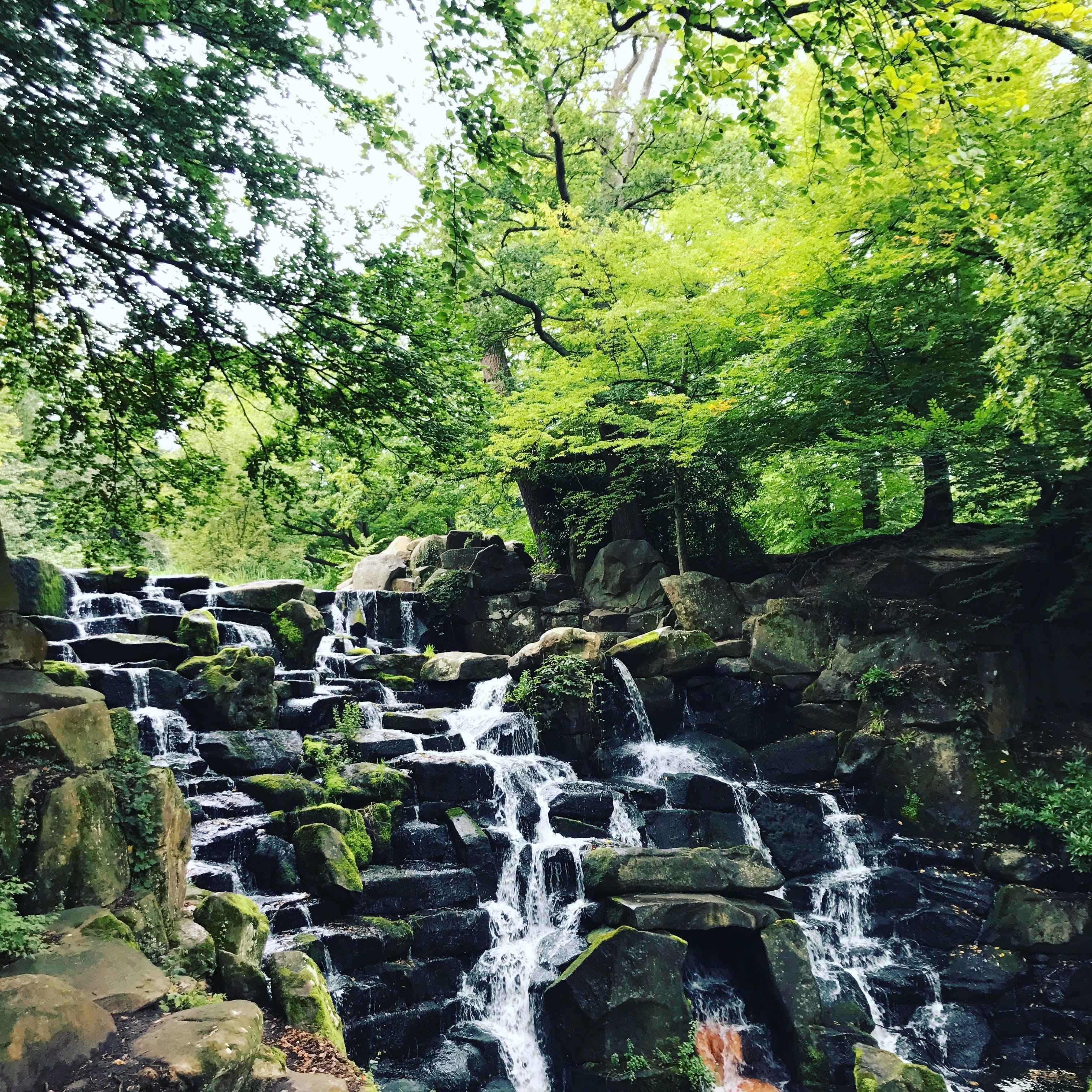 Free stock photo of Mossy rocks, outdoors, trees, waterfall