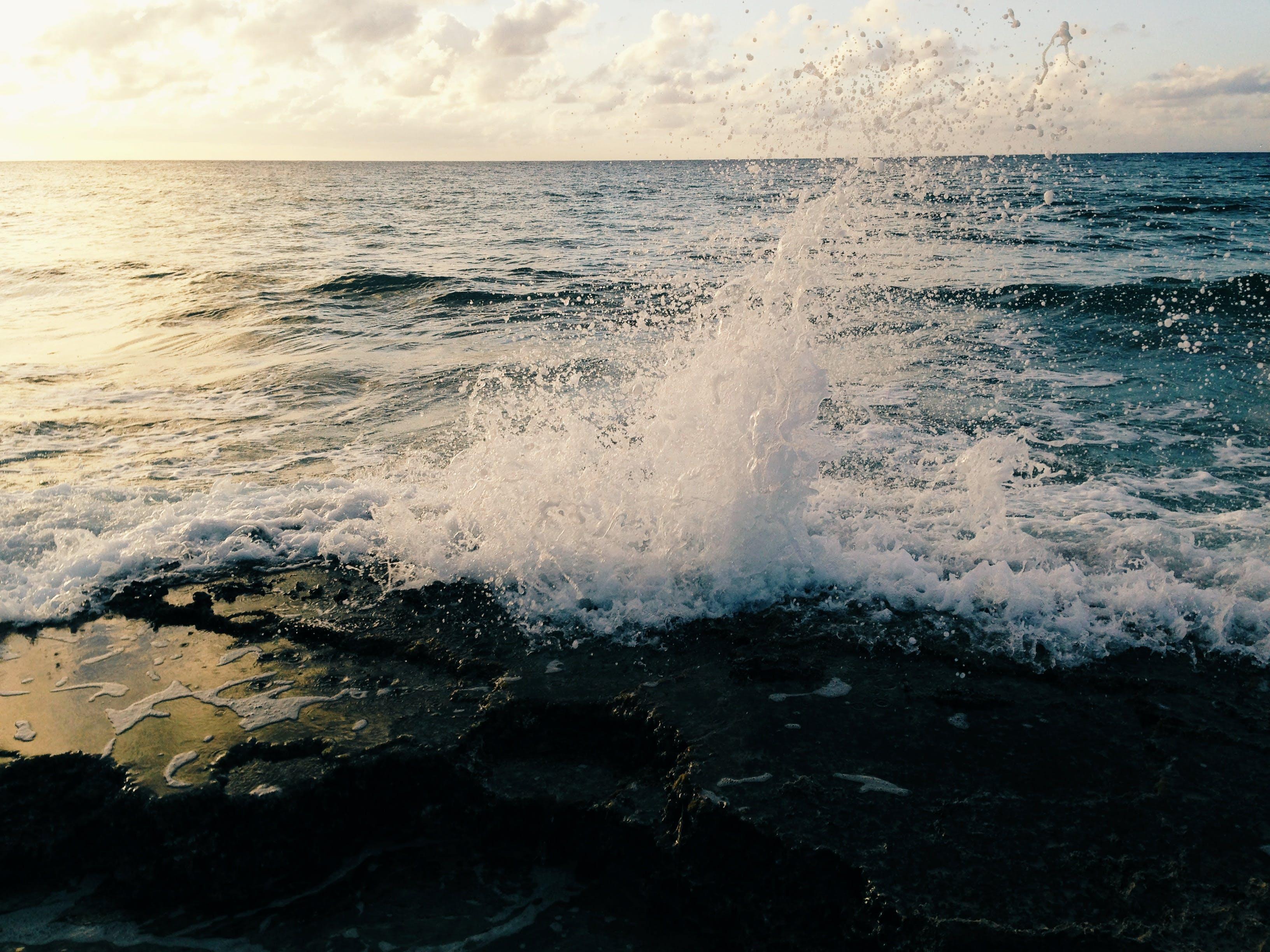 ocean, sea, splash
