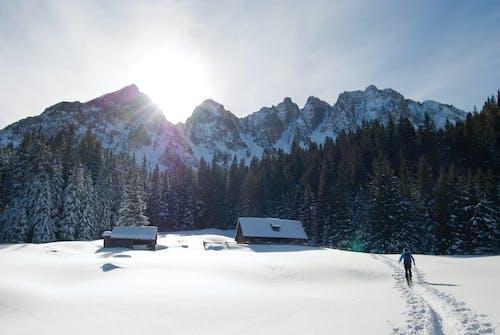 Foto profissional grátis de alpino, backcountry, brilho do sol, ensolarado