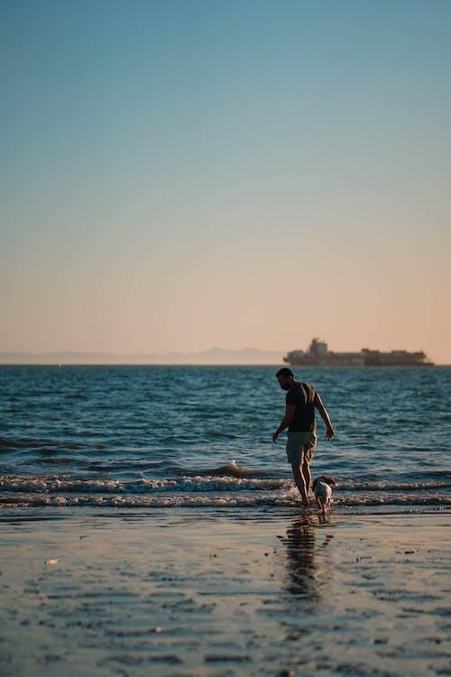 Man in Black Shorts Walking on Beach