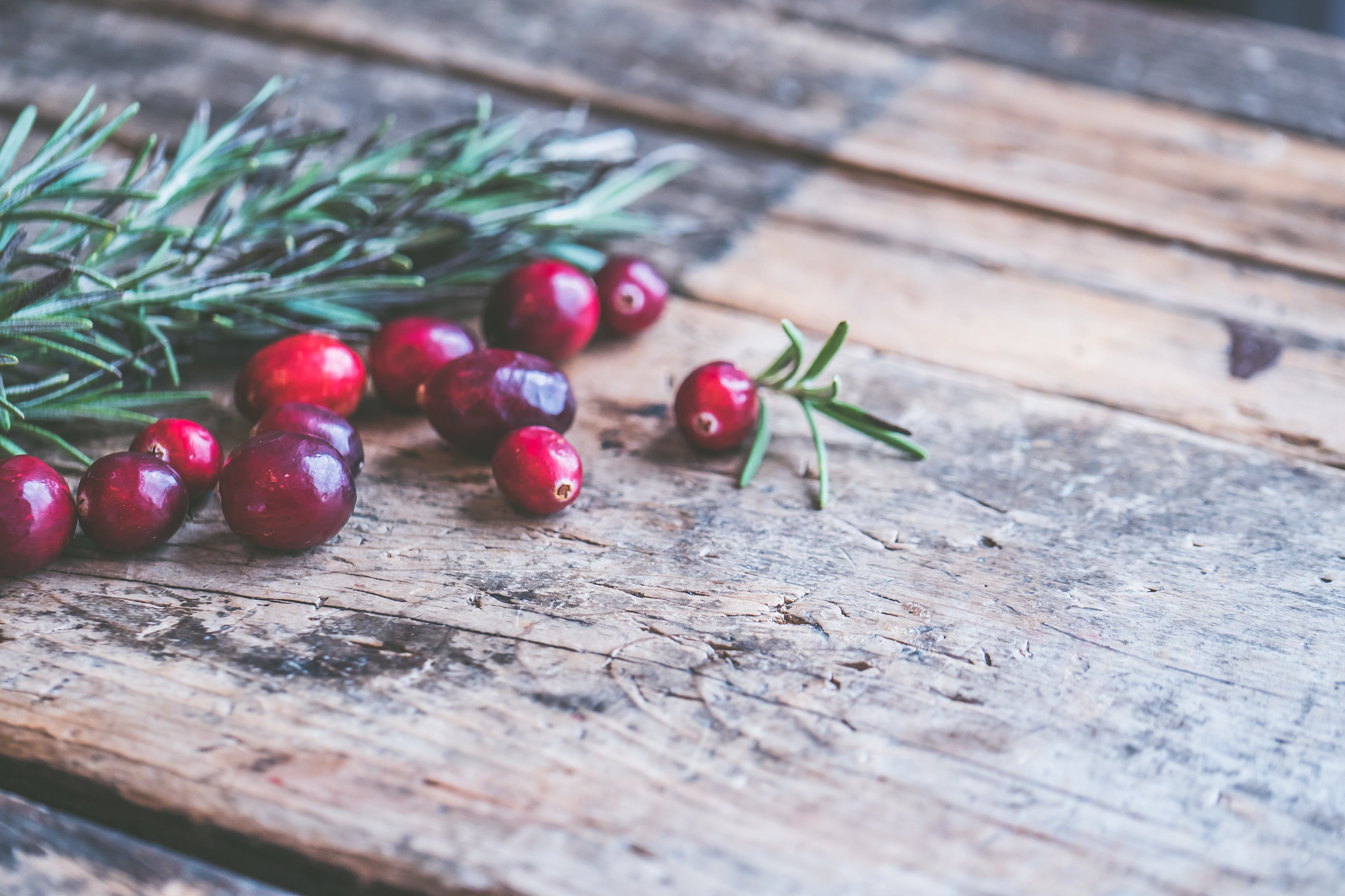 Free stock photo of background, christmas, cranberries, holiday
