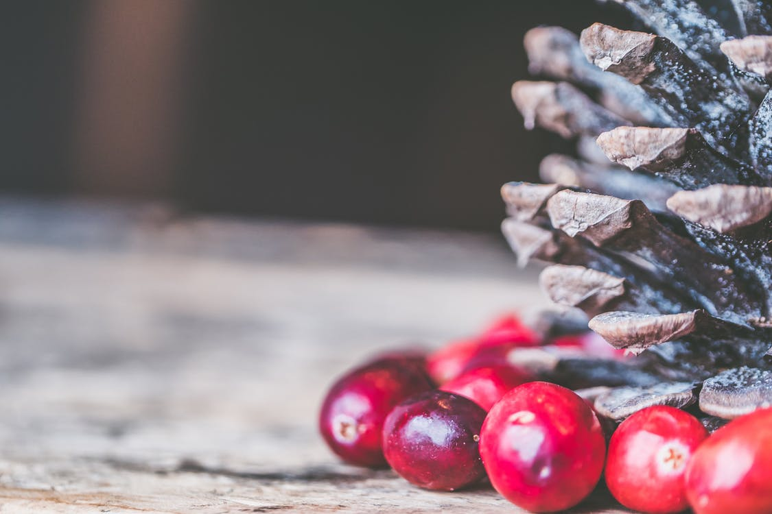 background, christmas, cranberries
