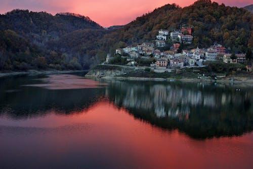 나무, 마을, 물, 반사의 무료 스톡 사진
