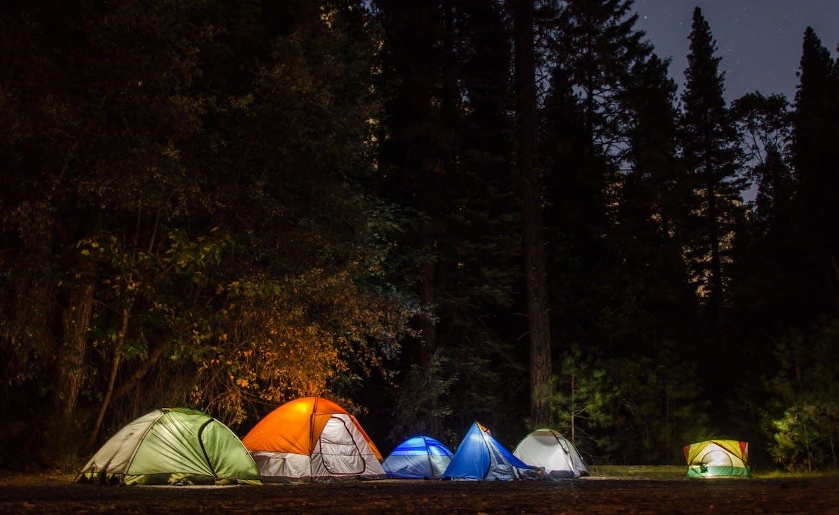 acampamento, área de camping, árvores