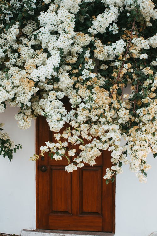 White and Brown Flower Wreath