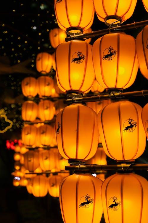 Close-Up Shot of Orange Lanterns