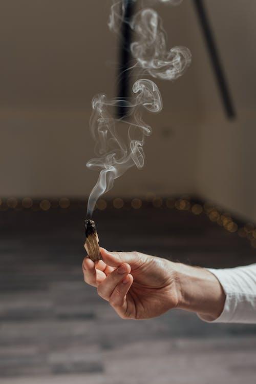 Foto profissional grátis de borrão, fumaça, holding