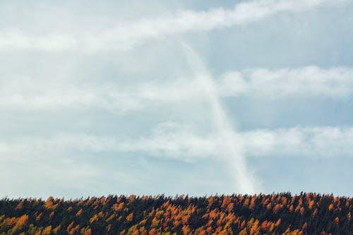 Gratis arkivbilde med dagslys, HD-bakgrunnsbilde, himmel, natur
