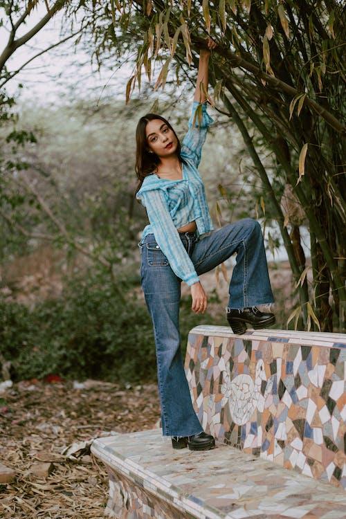 Photos gratuites de bambous, beau, espace extérieur