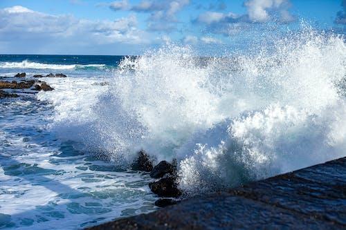 Free stock photo of big wave