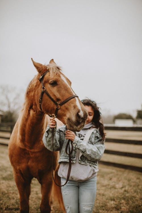 Woman in Gray Jacket Standing Beside Brown Horse