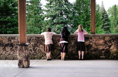Foto profissional grátis de amigos, amizade, árvores, calçamento