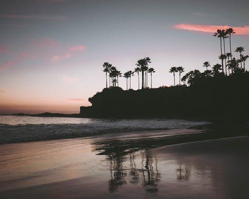 Gratis arkivbilde med daggry, hav, havkyst