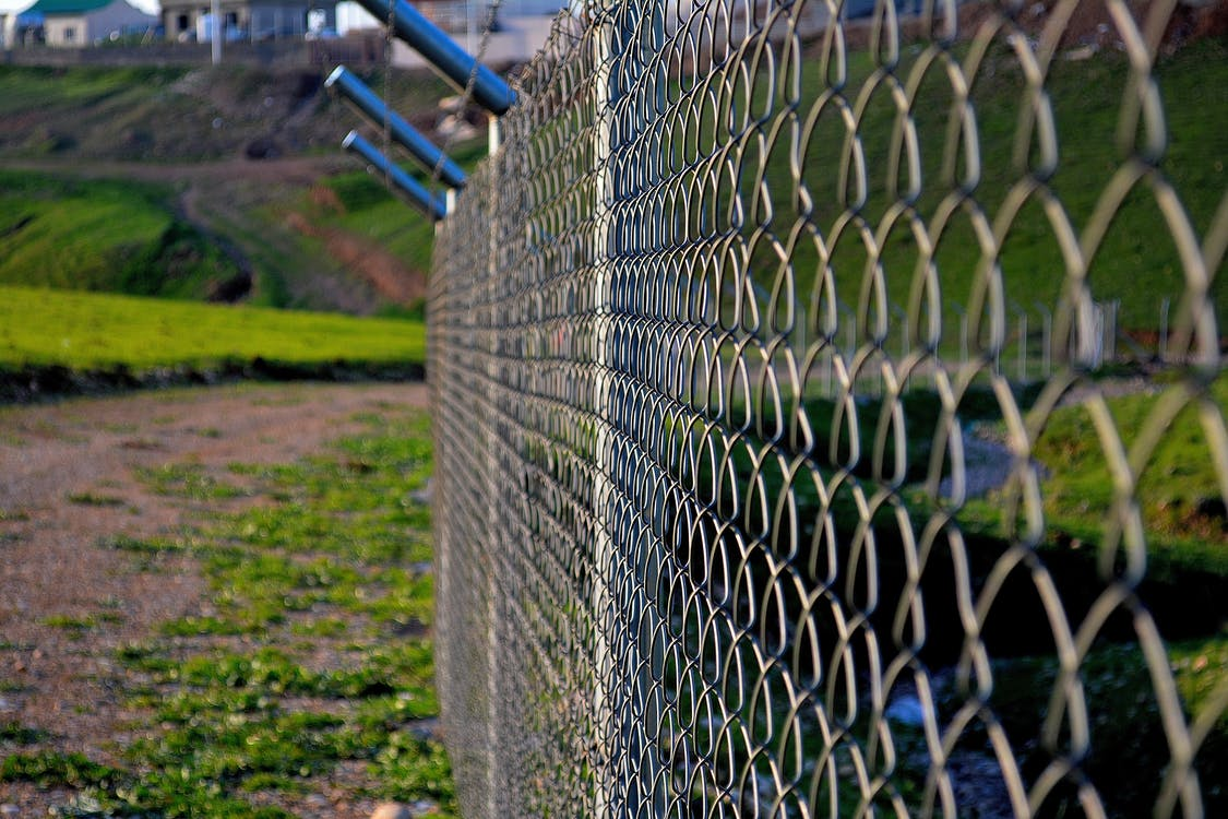 Free stock photo of adventure, fence, green