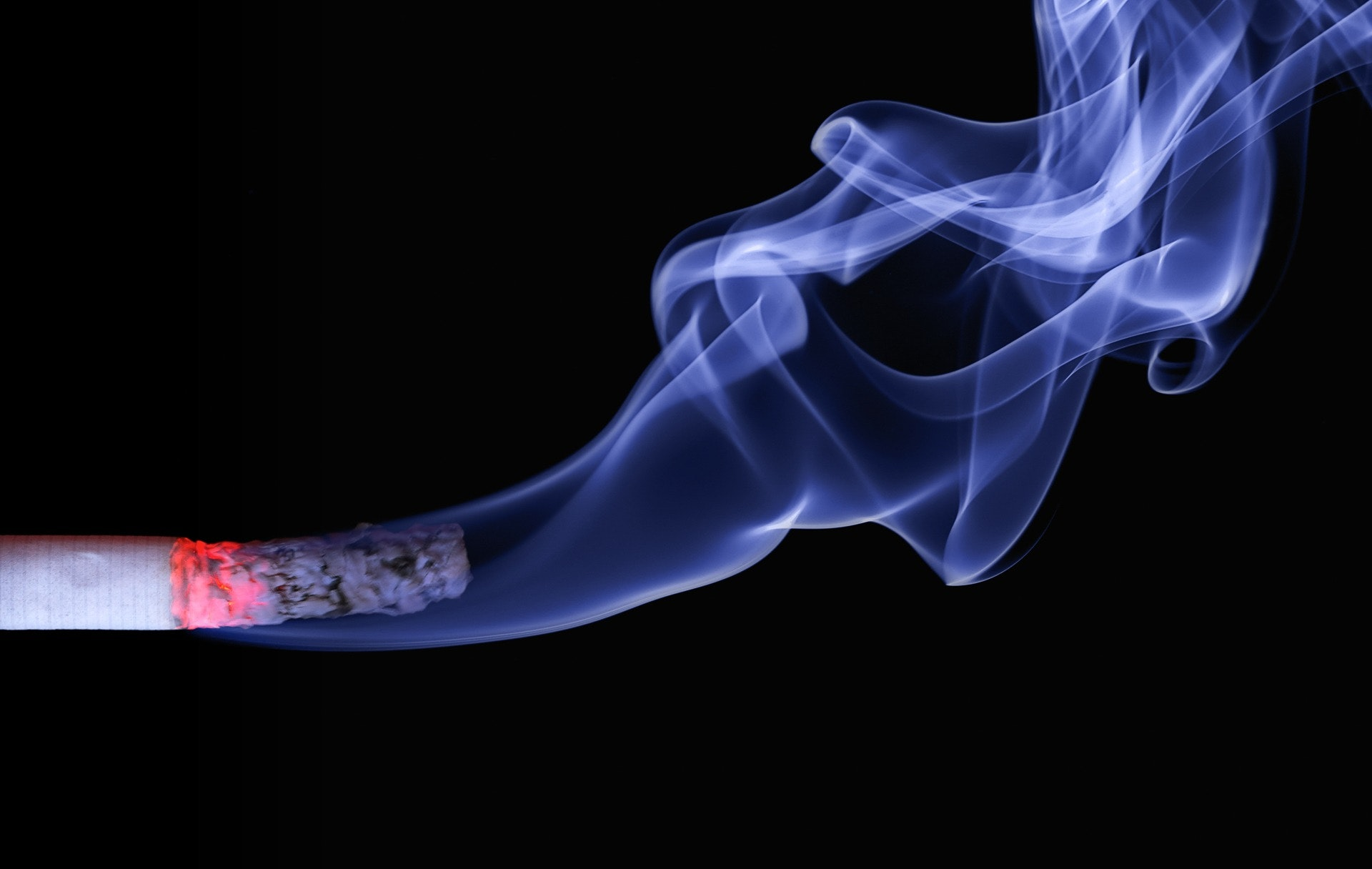 Lighted Cigarette Stick And White Smoke Wallpaper Free Stock Photo