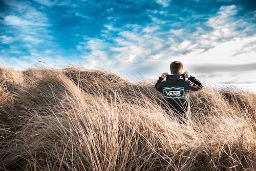 คลังภาพถ่ายฟรี ของ ที่ดิน, ทุ่งหญ้า, ท้องฟ้าครึ้ม, ท้องฟ้าสีคราม