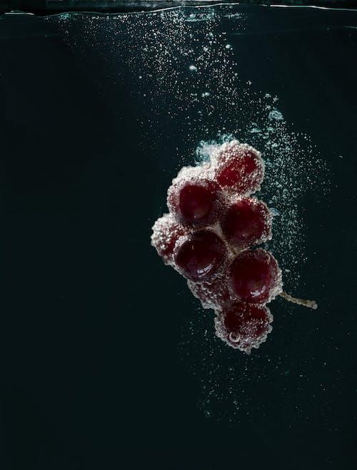Free stock photo of bubbles, fruit